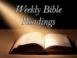weekly bible